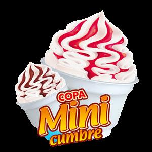 copa-mini-cumbre-